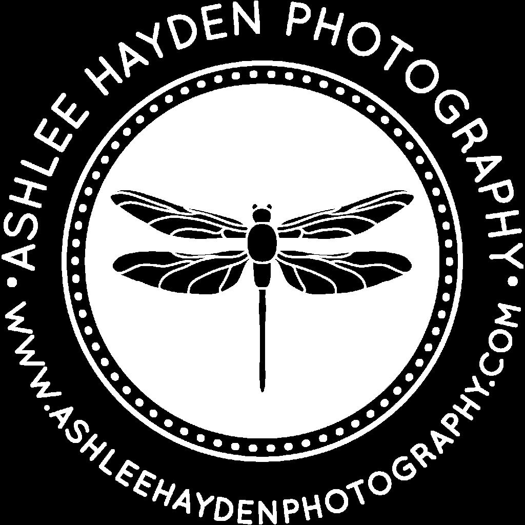 Ashlee Hayden, San Diego family photographer, logo
